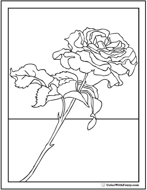 Coloring Sweet Rose