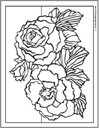 Primrose Coloring Pages
