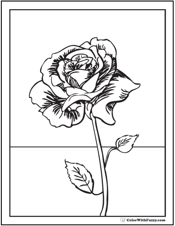 Detailed Rose Coloring Picture