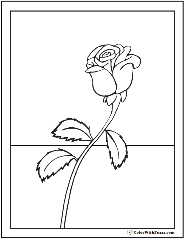 Single Rose To Color