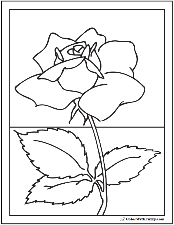 Realistic Rose Coloring Sheet