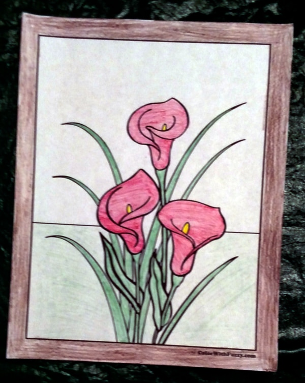 Calla Lilies and lily coloring sheets.