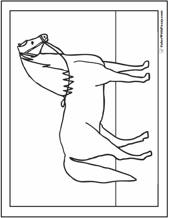 Beautiful Arabian Horse Coloring Page