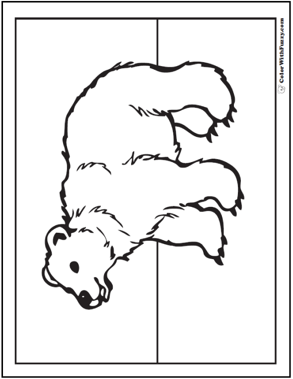Itsybitsylearners Hibernating Animals Coloring Pages Winter Hibernation