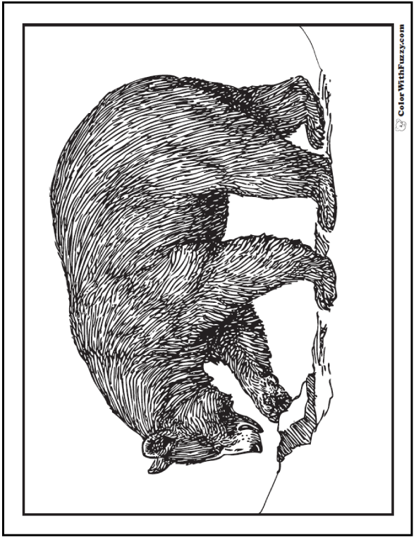 Realistic Brown Bear Coloring Pages: Digging for grub.