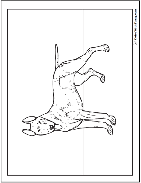 Dog Coloring Pages: Bull Terrier