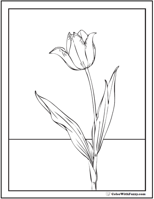 Coloring Page - One Tall Tulip Flower