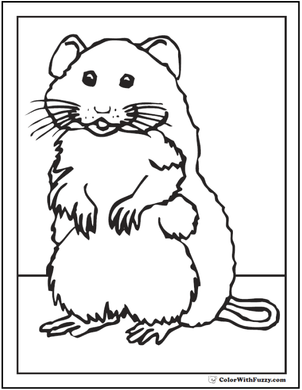 mouse coloring pages to print and customize for kids