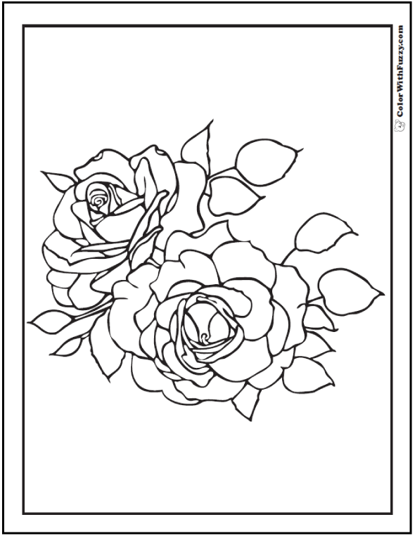 coloring page rose two roses with leaves