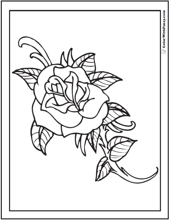 Cool Rose To Color