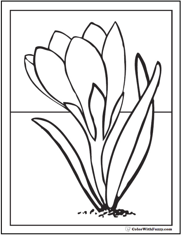 Fun Spring Flowers Coloring Pages. Crocus Spring Flowers