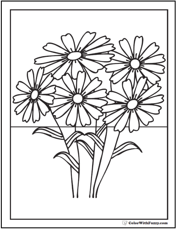Shasta Daisies Coloring Sheets
