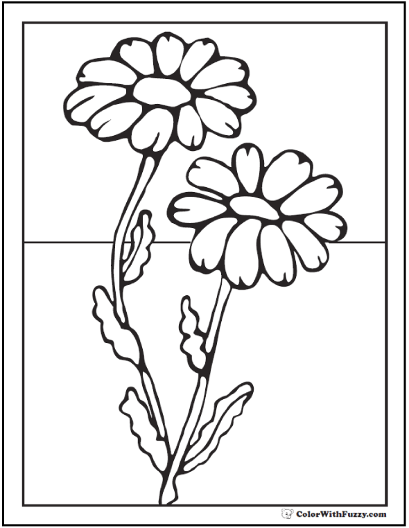 medium daisy flower coloring pages - photo#4