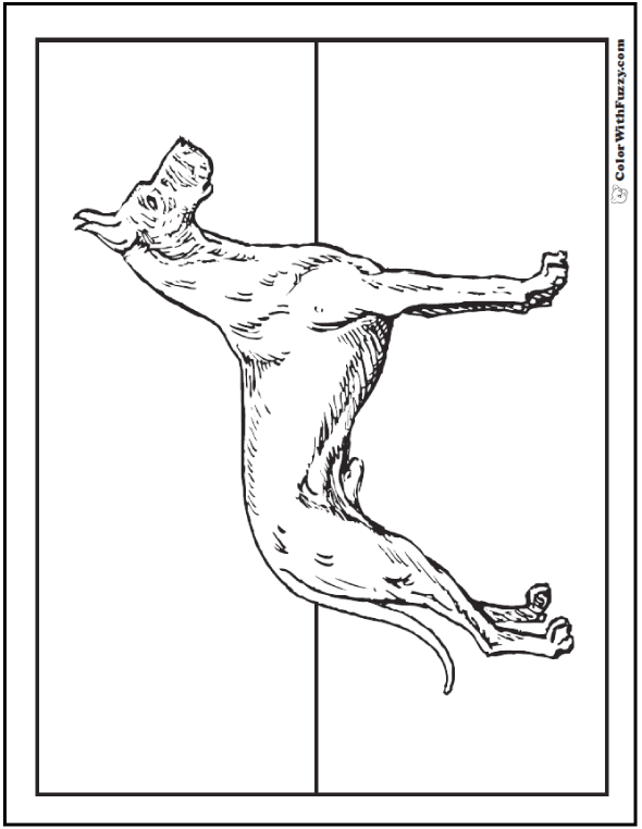 Dog Coloring Pages: Great Dane