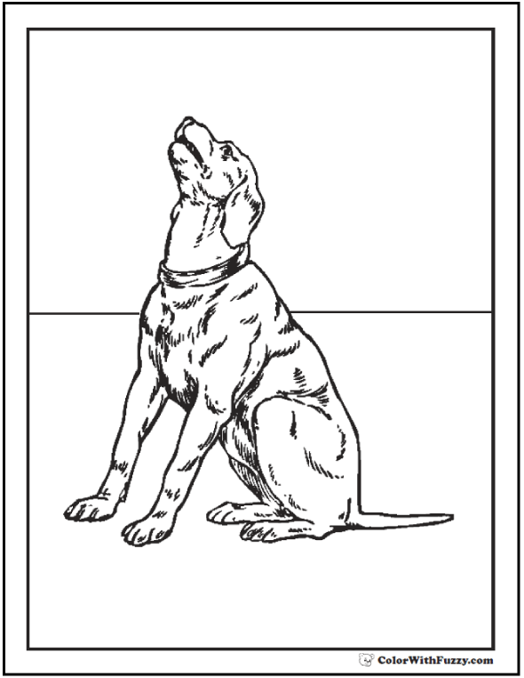 photo relating to Dog Coloring Pages Printable called 35+ Pet Coloring Web pages ✨ Breeds, Bones, And Pet dog Properties