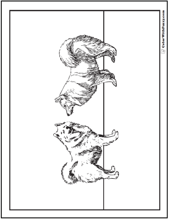Dog Coloring Pages: Huskies