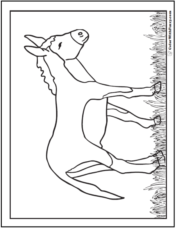 Donkey Coloring Page - darling little burro.