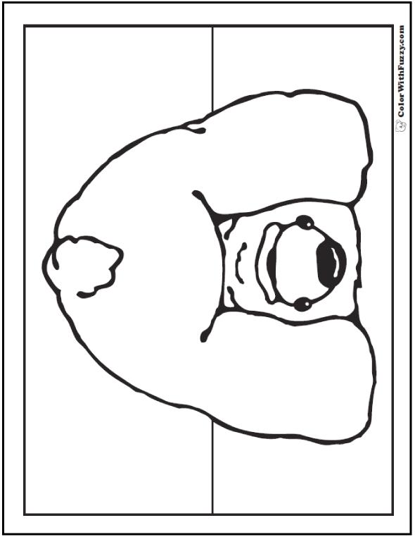 Peek A Boo Funny Polar Bear: Polar bear coloring page.