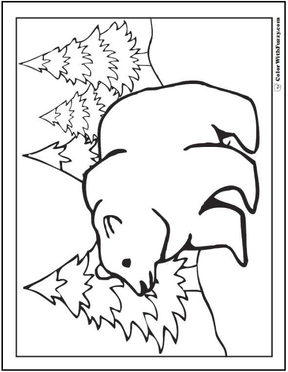 Grizzly Bear Printable: On The Hunt