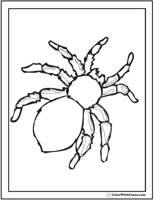 Fuzzy Halloween Spider Coloring Page