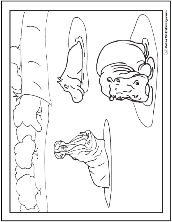 Detailed coloring pages of hippos in a river.