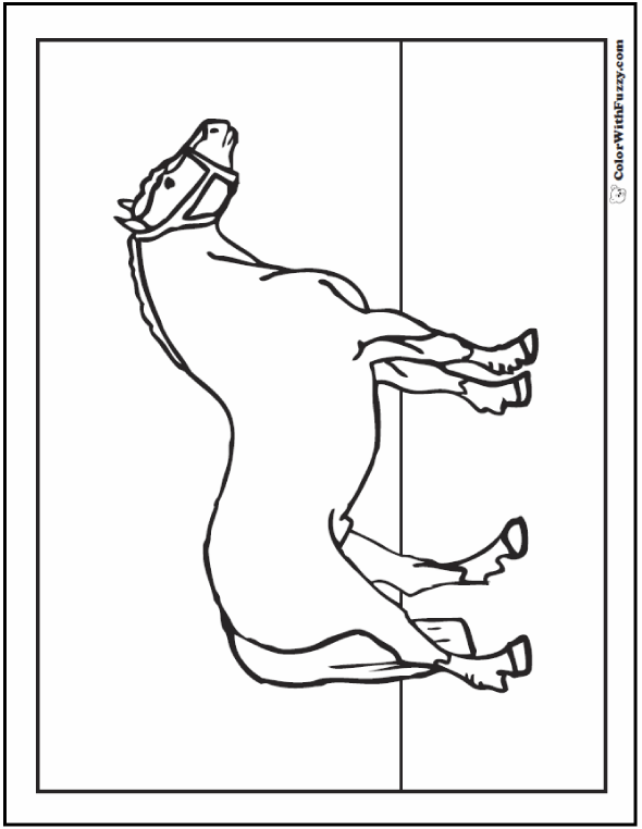 Horse Coloring Pages For Kids: Belgian