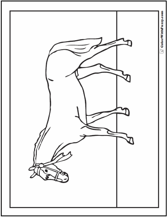 coloring book pages trojan horse | Horse Coloring Page: Riding, Showing, Galloping