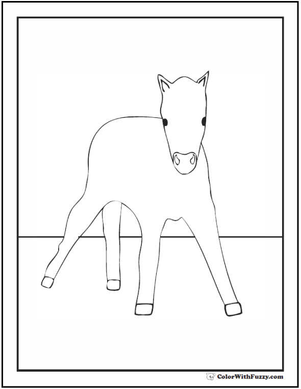 Horse Foal Coloring Pages: Baby horse with little legs.