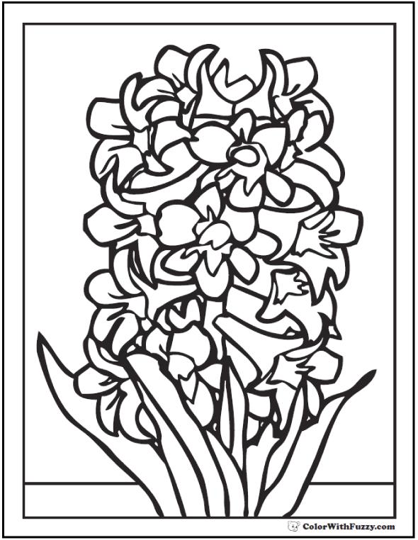 Hyacinth Spring Flower Printable