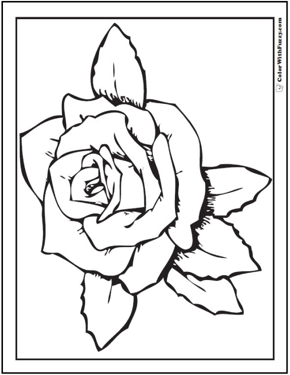 Kindergarten Rose Coloring