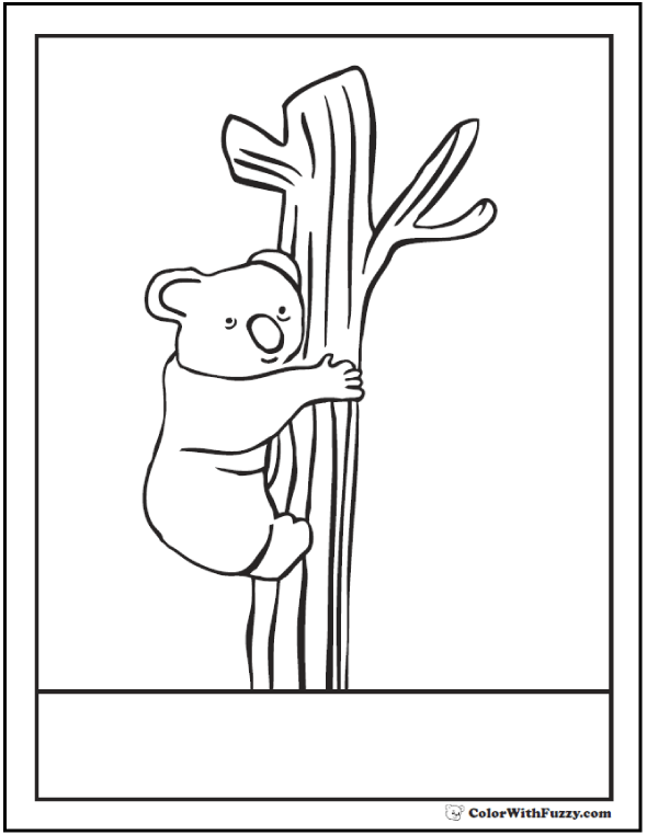 A look over the top! Coloring page of a koala bear.