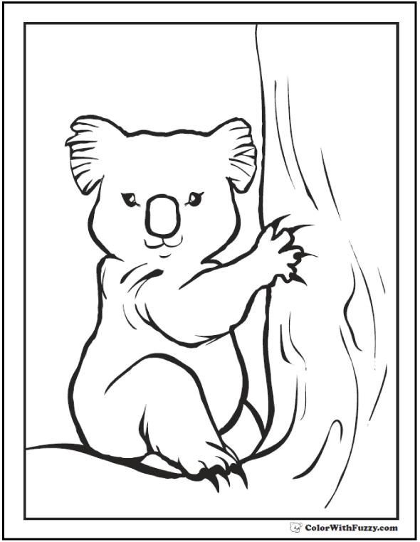 Koala Coloring Pages For Kids: Hop A Ride With a Koala!