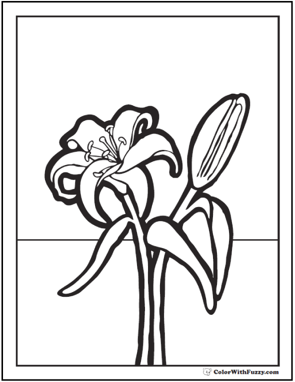 preschool lily coloring pages - Lily Coloring Pages