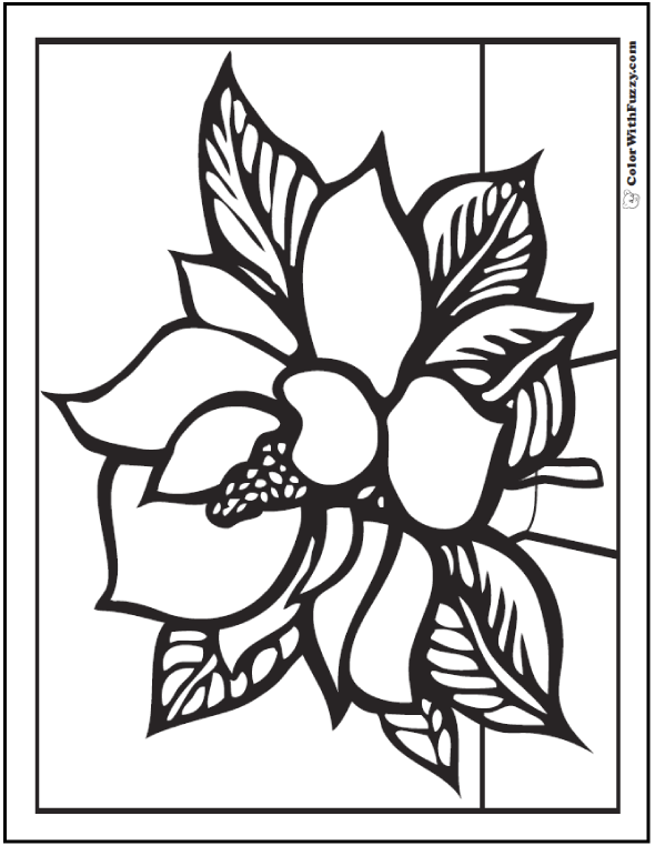 Magnolia Spring Flower Coloring Picture