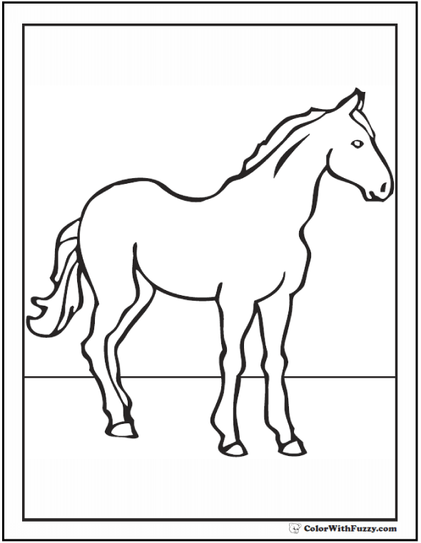Morgan Horse Coloring Page