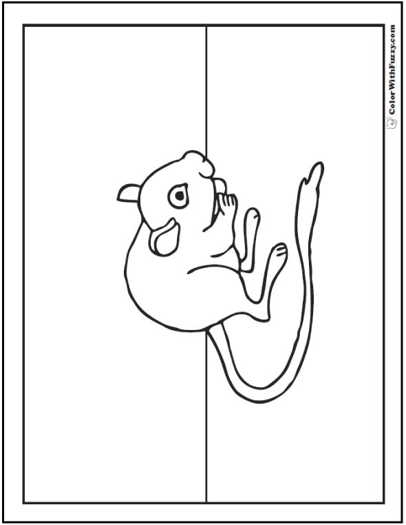 Pack Rat Printable: A kangaroo rat packs seeds in his cheeks like a pack rat.