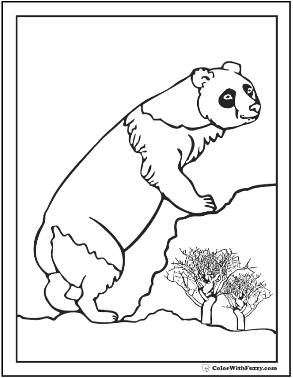 Panda Bear Coloring Sheet: Climbing the rocks.