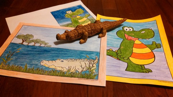 Alligator Coloring Sheets