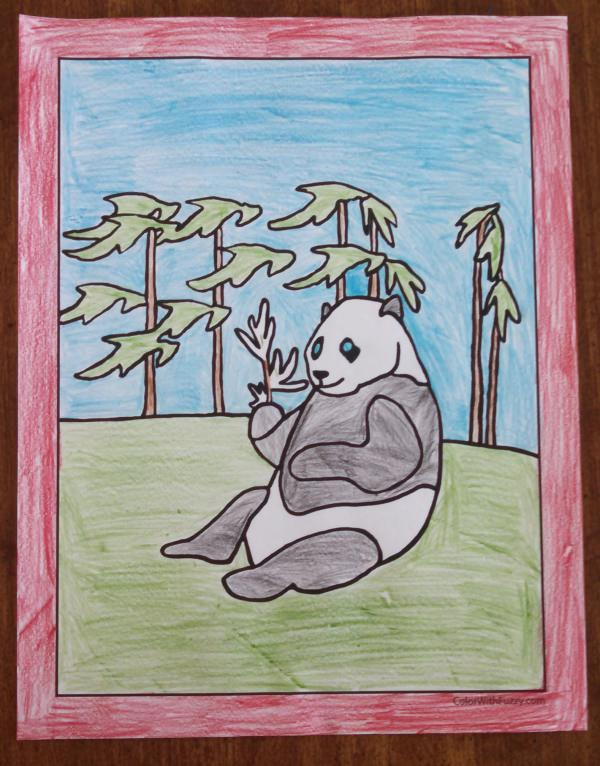 Panda Coloring Pages: Bamboo And Baby Pandas