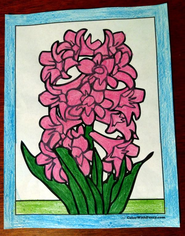 Spring Coloring Page - Hyacinth