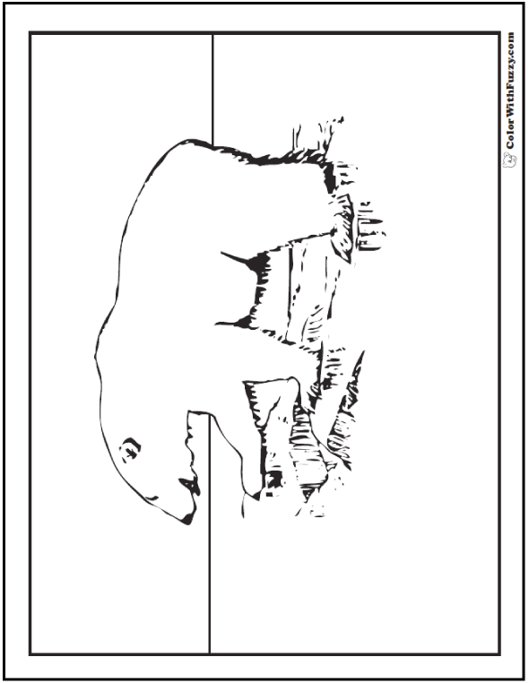 Kid's Polar Bear Coloring Page - Polar Bear on rocks.