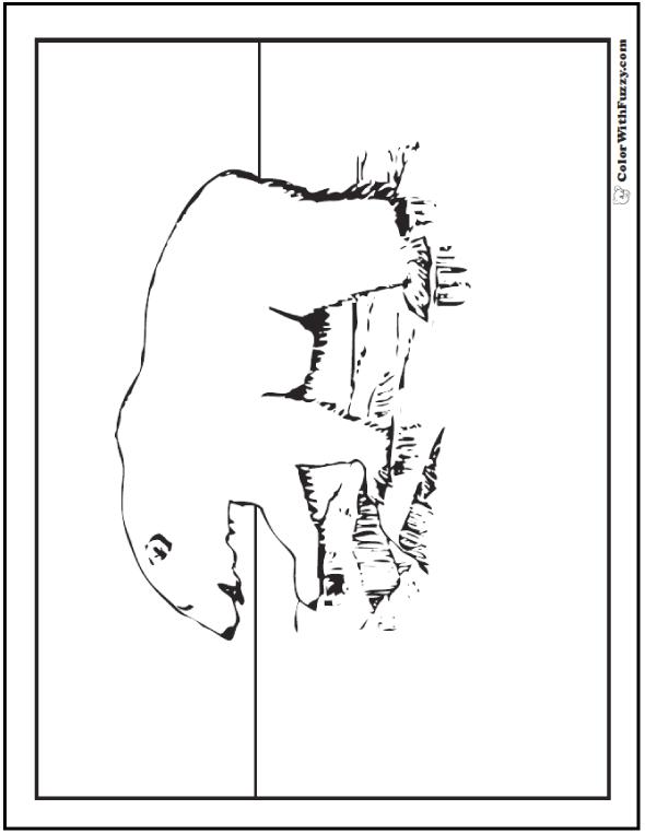 Kid's Polar Bear Coloring Page - Polar Bear on rocks.
