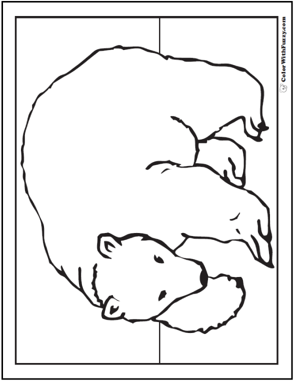 Realistic Bear Coloring Sheet