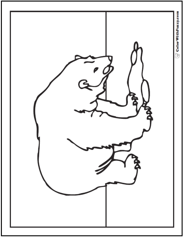 Printable Polar Bear Picture. Polar bear coloring pages.