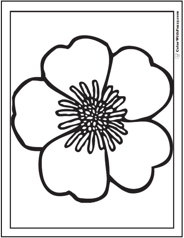 Simple Primrose Coloring Sheets