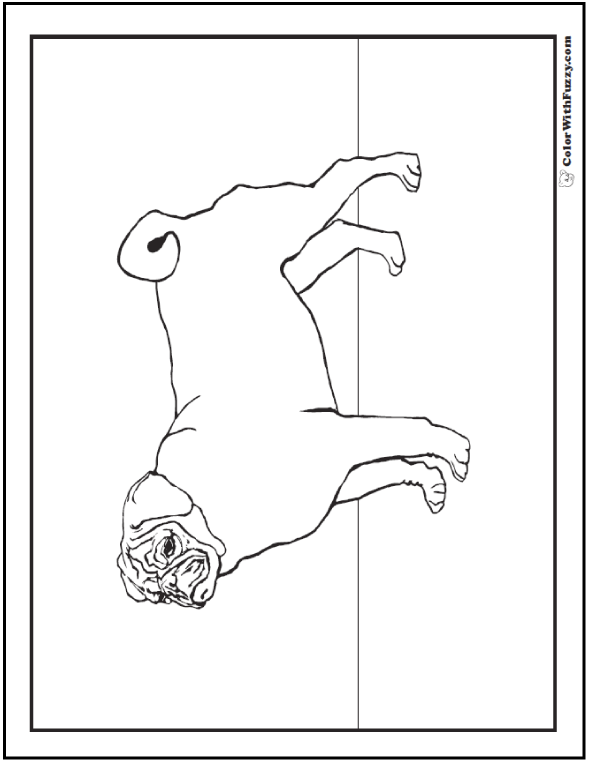 Dog Coloring Pages: Pug Dog