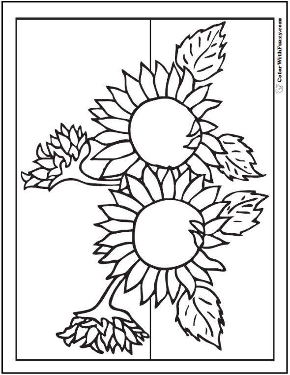 Printable Sunflowers Coloring - Gray Stripe