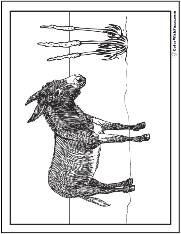 Realistic desert donkey coloring pages.
