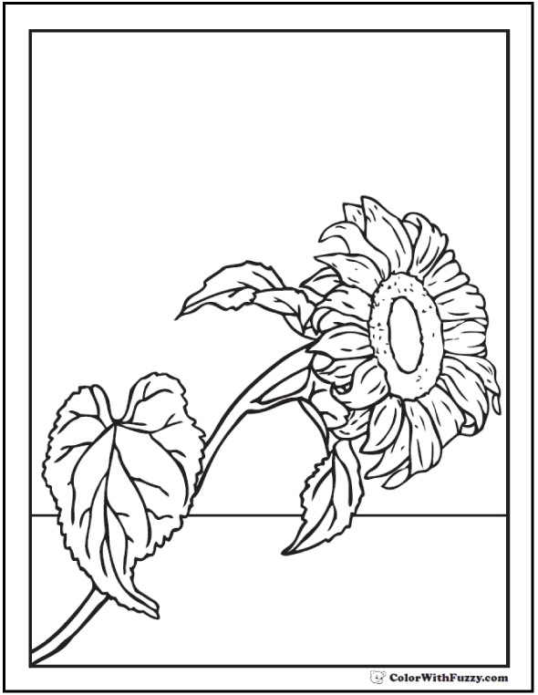 Realistic Sunflower Coloring Picture