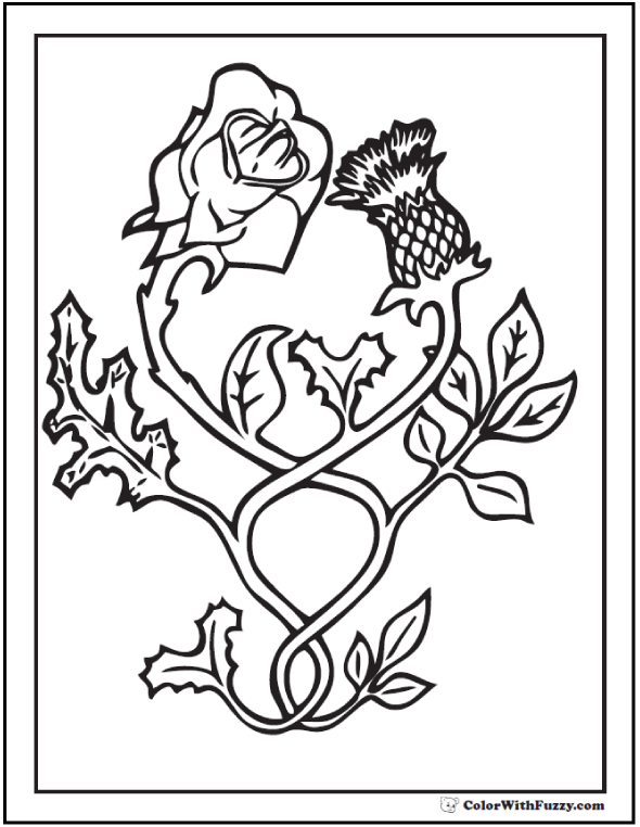 Rose And Thistle Coloring Sheet